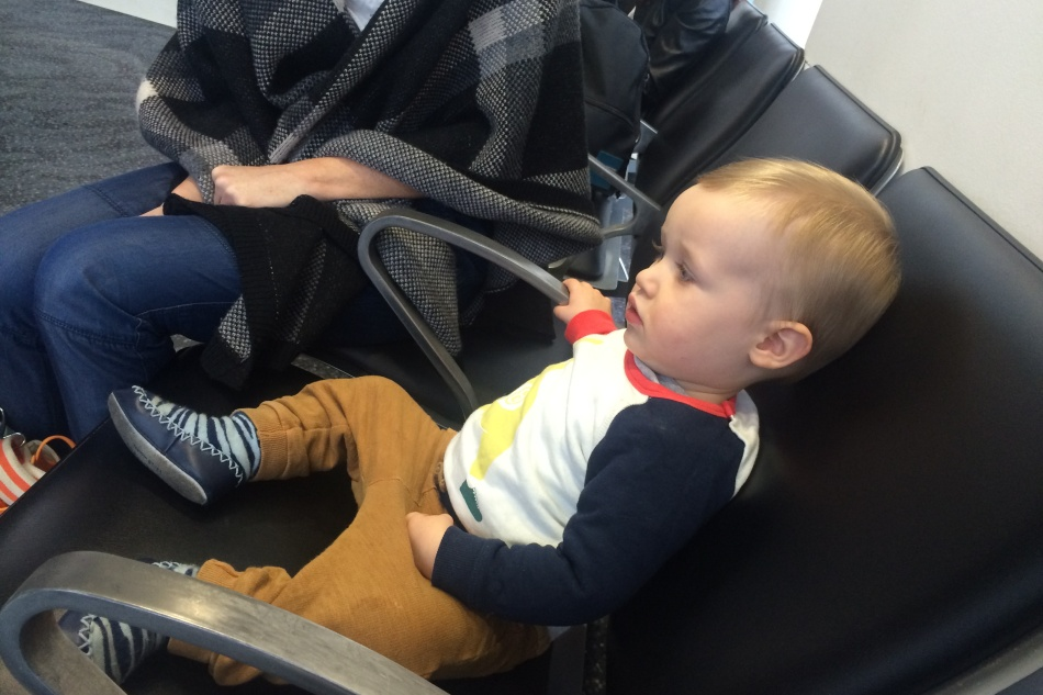 Oscar Patiently Waiting at the Airport